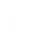 Plus Dane – Implementation Support